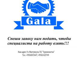 Услуги от кадрового агентства Gala