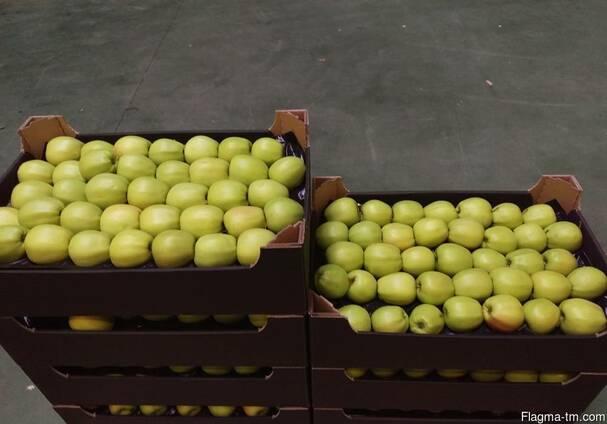 Яблоки из Польши!