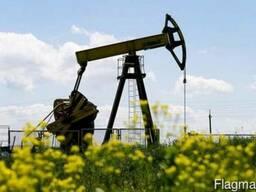 Покупаем нефть из Туркменистана на экспорт! Постоянно!